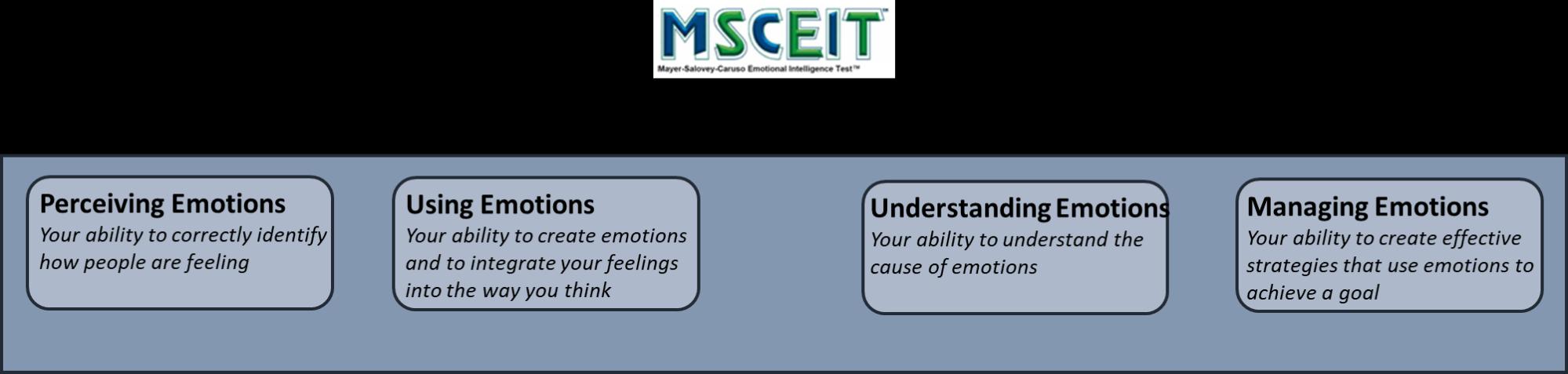 Emotional Intelligence in Leadership - Neil Mitchell